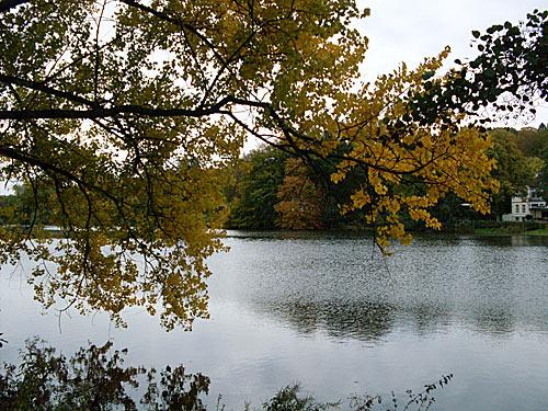 Herbst - Muehlenteich beim Schloss Reinbek