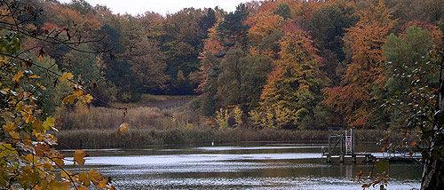 Tonteich Herbst in Reinbek - Herbstbilder