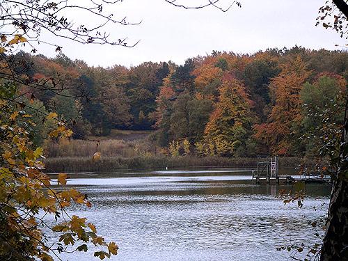 Herbst in Reinbek - Herbstbilder