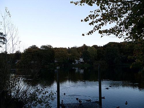 Muehlenteich-Reinbek Herbst