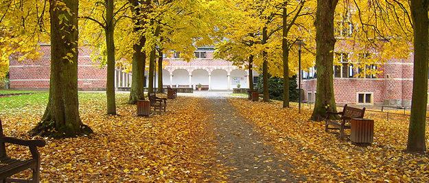 Schloss Reinbek Herbst