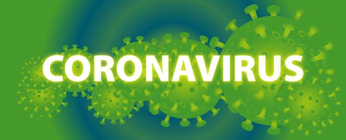 Coronavirus Übertragung Hunde und Katzen?