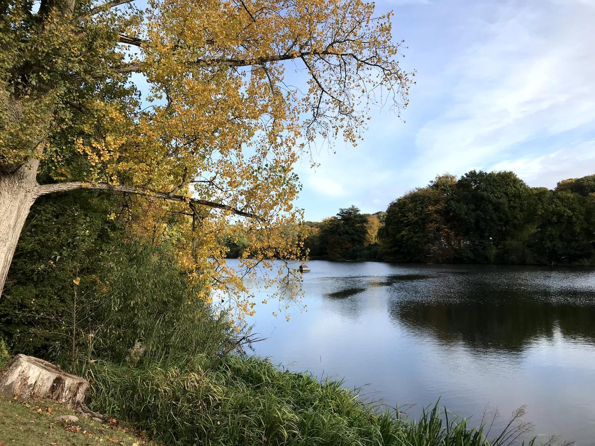 Mühlenteich am Schloss Reinbek im Herbst