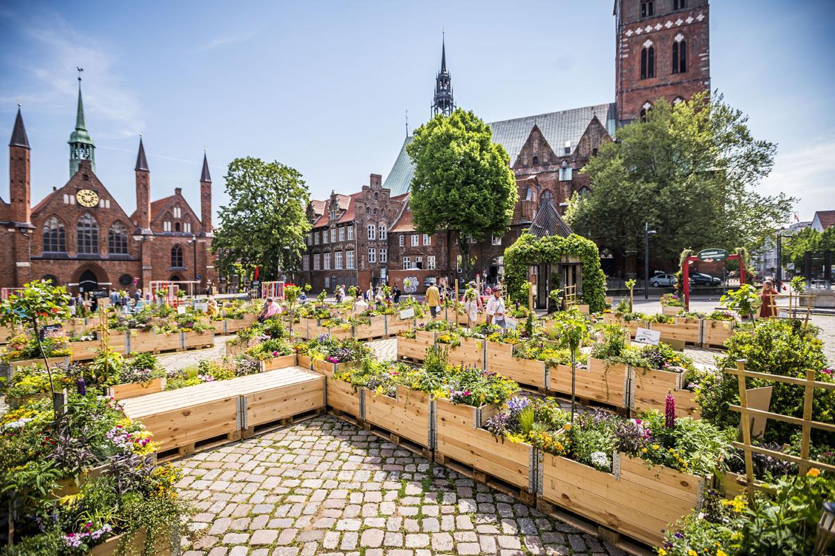 Kulturgrüne Komplimentegarten auf dem Koberg in Lübeck